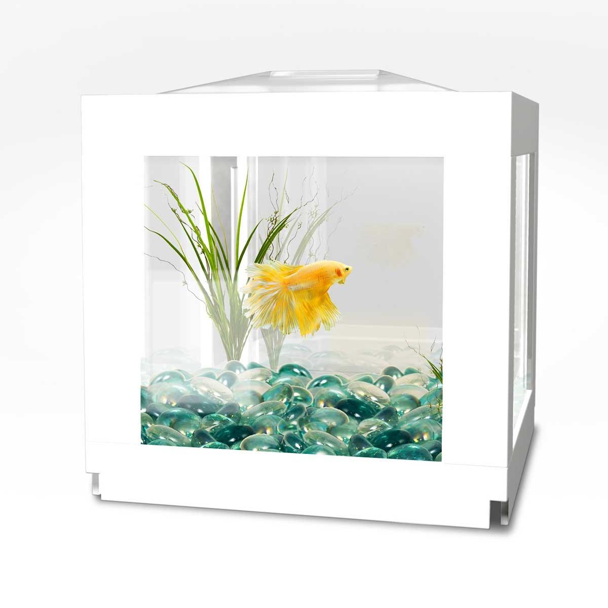 Biobubble deco cube habitat white for Deco habitat