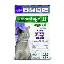 Advantage II for Large Cats (Over 9 lbs, 6 Month Supply)