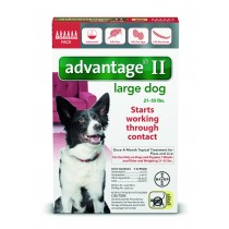 Advantage II for Large Dogs (21 - 55 lbs, 6 Month Supply) Front