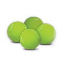 Hyper Pet Replacement Balls 4 pack - HYP002
