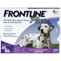Frontline Plus for Large Dogs (45 - 88 lbs, 6 Months Supply)